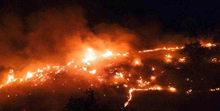 Elazığ'daki örtü yangını rüzgarın etkisiyle yeniden alevlendi
