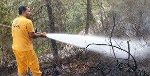 """Bakan Pakdemirli: """"Osmaniye'deki yangın kontrol altına alındı"""""""