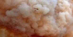 İspanya'da korkutan orman yangını