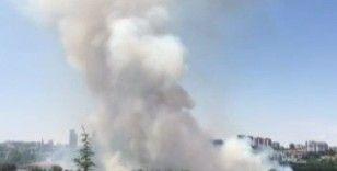 Ankara'da Atatürk Orman Çiftliği'nde korkutan yangın