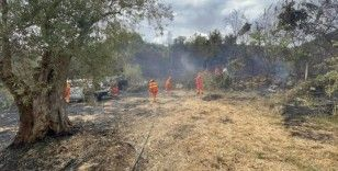 Adana'da ikinci orman yangını