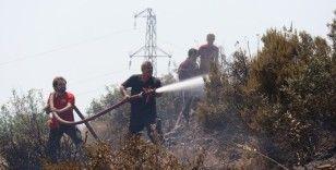 Kocaeli'deki orman yangını 1 buçuk saatte kontrol altına alındı