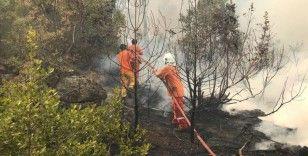 Alanya'da çıkan orman yangınına havadan ve karadan müdahale ediliyor