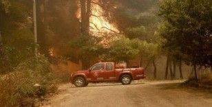 Türkiye'de 8 ilde 16 ilçede orman yangını