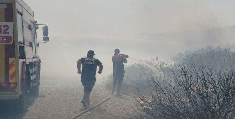 Didim'de makilik ve zeytinlik alanda yangın çıktı
