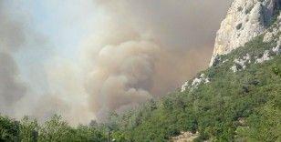 Osmaniye'deki orman yangını kısmen kontrol altına alındı