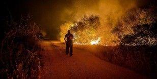 Bosna Hersek Federasyonu, orman yangınlarıyla mücadele eden Türkiye'ye itfaiye eri gönderecek