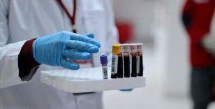 Günlük koronavirüs verileri