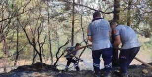 Hatay'da ormanlık alanın yakınında çıkan bahçe yangını kontrol altına alındı