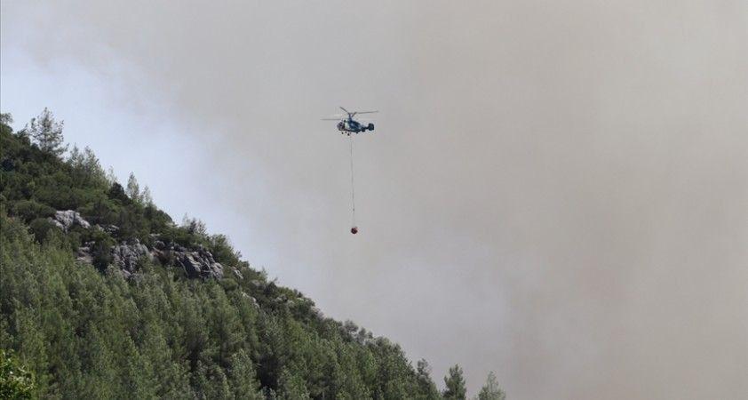 İran'daki Azerbaycan Türklerinden orman yangınlarıyla mücadele eden Türkiye'ye destek
