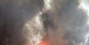 Azerbaycan'da ormanlık alanda yangın