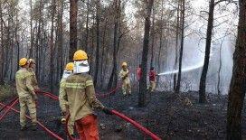 İzmir'de çıkan orman yangını kontrol altına alındı