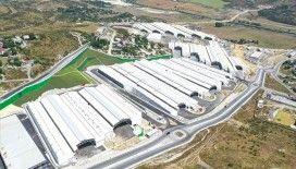 İstanbul Gıda Toptancıları Çarşısı 30 Ağustos'ta hizmete girecek
