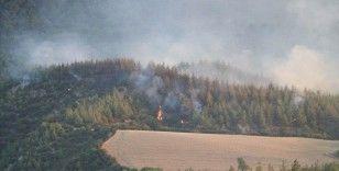 Denizli'de çıkan orman yangını büyük oranda kontrol altına alındı