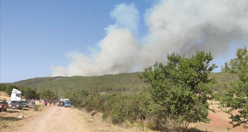 Denizli'de çıkan orman yangınına müdahale ediliyor