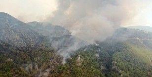 Köyceğiz'de dumanlar tekrar yükseldi