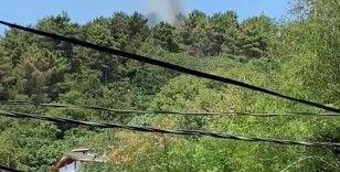 Beykoz'da korkutan orman yangını