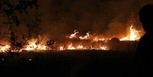 Kuzey Makedonya hükümeti orman yangınları nedeniyle 'kriz durumu' ilan etti