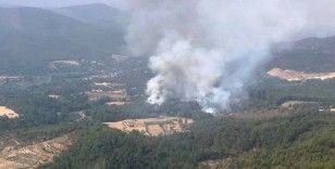Muğla'da bir yangın daha çıktı