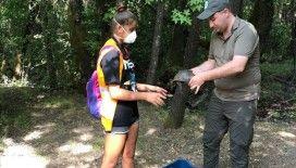 Marmaris'te 9 gün süren orman yangınında yaban hayvanları da kurtarıldı