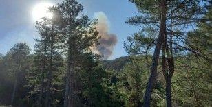 Denizli'deki orman yangını söndürüldü