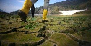İklim değişikliğine karşı savunmasız ülkelerden 'acil durum anlaşması' çağrısı