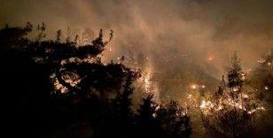 Uşak'ta çıkan yangında 2.5 hektar alan kül oldu