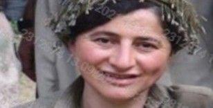 Etkisiz hale getirilen bir teröristin 'Turuncu' kategorinden arandığı tespit edildi