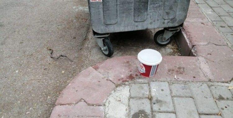 Sokak hayvanları için konulan su ve mamaları döken komşusu çıktı
