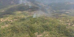 Tunceli'deki örtü yangını kontrol altına alındı