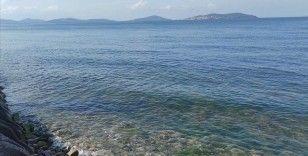 Marmara Denizi'nde yeni tehlike 'oksijen azlığı'