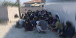 Kilis'te kaçak göçmenler yakalandı