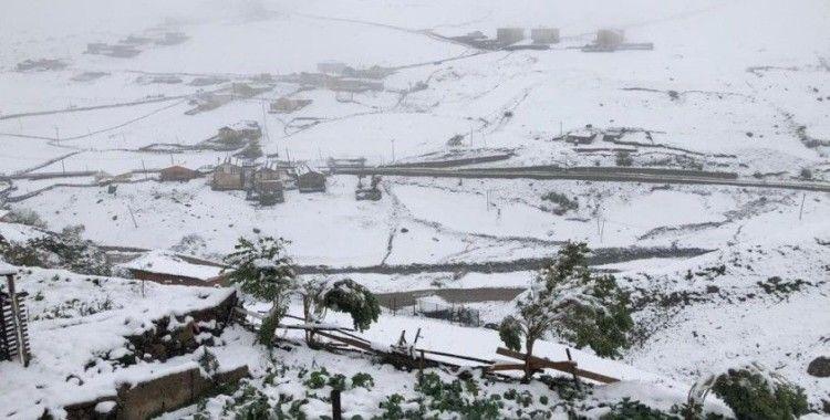 Rize'nin yüksek kesimlerine kar düştü