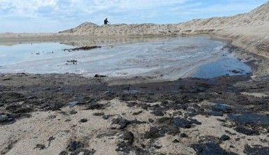 California kıyılarında petrol sızıntısını temizleme çalışmaları başladı