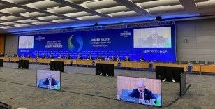 Bakan Elvan: OECD Bakanlar Konseyi Toplantısında Yeni Vizyon Belgesini kabul ettik