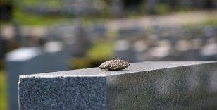 ABD'de Müslüman mezarlığı projesi engellenmeye çalışılan dernek, 500 bin dolar tazminat kazandı
