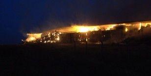 Kırklareli'nde çiftlik yangını: Çok sayıda saman balyası kül oldu