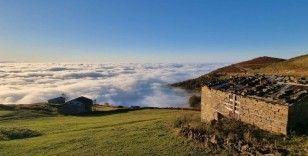 Trabzon'da yaylalardan bulut denizi manzaraları
