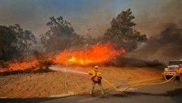 California'da yangın, 5 bin 500 hektar alan yandı