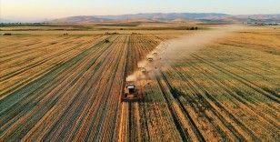 Tarım-GFE yıllık yüzde 28,74 arttı