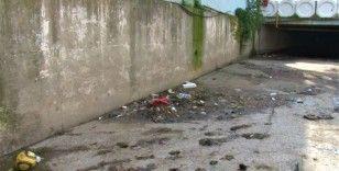 Maltepe'de Çamaşırcı Deresi'nin lağım kokusu ve çöpü esnafı vurdu