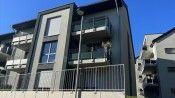 Almanya'da Türklerin oturduğu daireye molotofkokteyli atanlar serbest bırakıldı